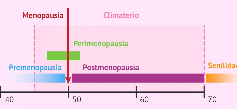 Fases de climaterio y la menopausia (1)